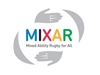 Imagen decorativa de MIXAR Mixed Ability Rugby